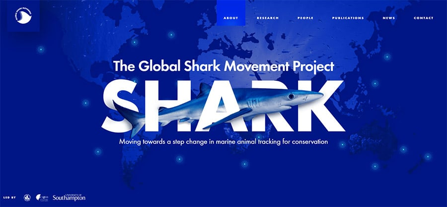 The Global Shark Movement Project (GSMP)
